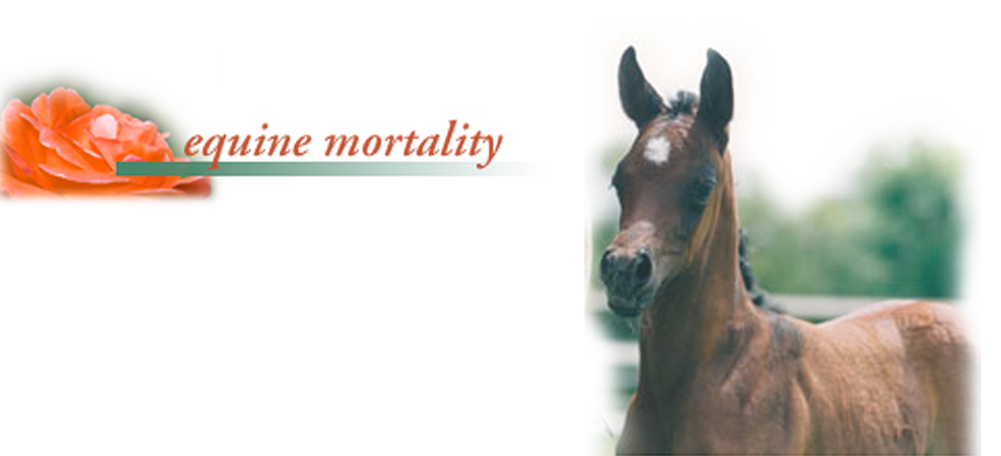 title equine mortality